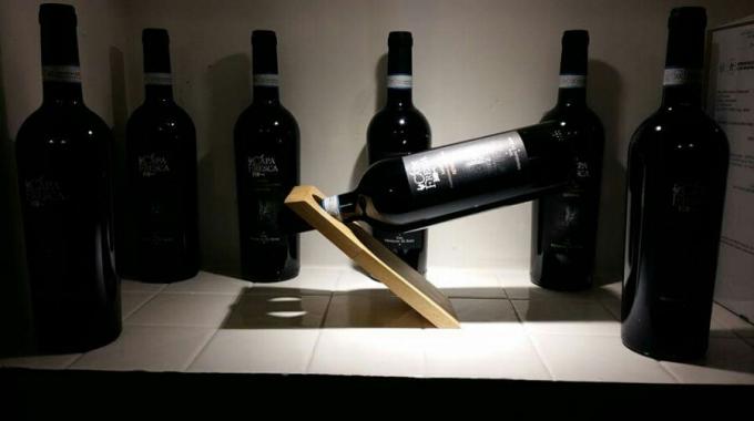 Capa Fresca un vino equilibrato